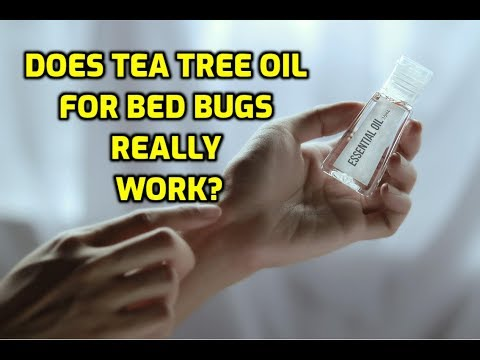 Does Tea Tree Oil For Bed Bugs Really Work?