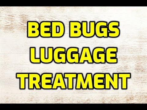 Bed Bugs Luggage Treatment (A Complete Guide)