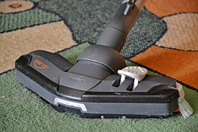 How to Get Bed Bugs Out of Carpet