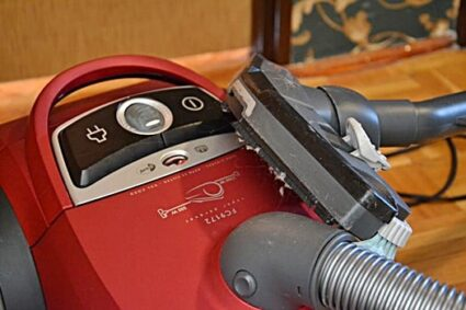 can bed bugs live in a carpet cleaner