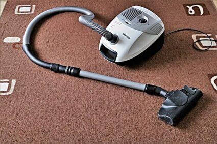 can bed bugs live in a vacuum cleaner