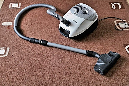 can you get bed bugs from renting a carpet cleaner?