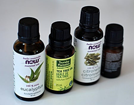 how to make tea tree oil spray for bed bugs