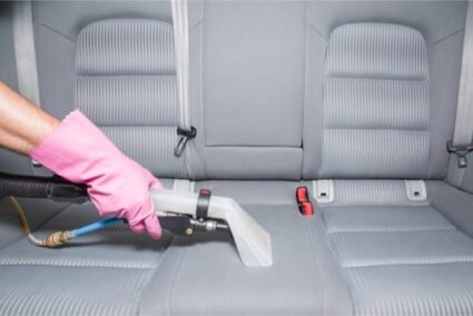 how to get rid of bugs in your car