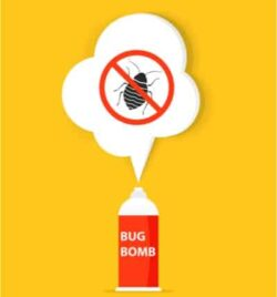 bed bug bombs effective