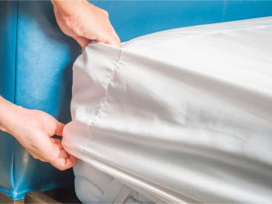 how to check for bed bugs in a mattress