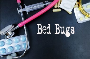 how to use boric acid to get rid of bed bugs
