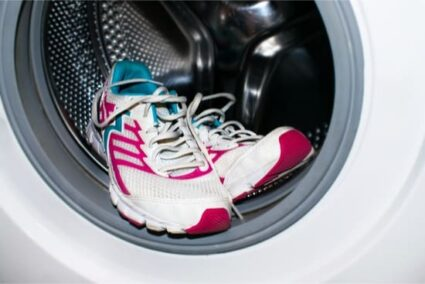 Can bed bugs survive in washing machine?