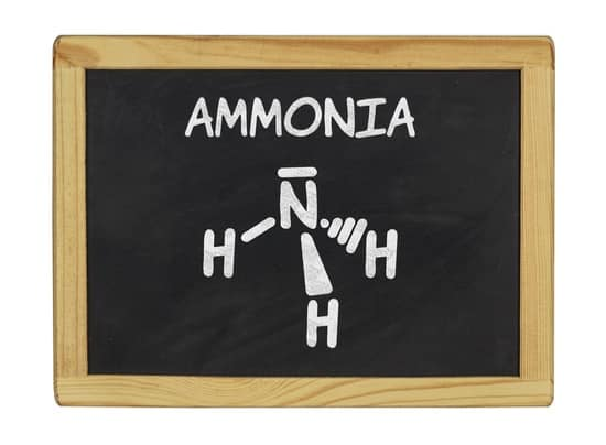 How to use ammonia to get rid of bed bugs