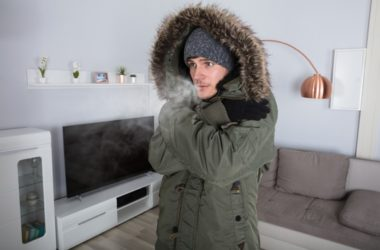 does freezing kill bed bugs and their eggs?