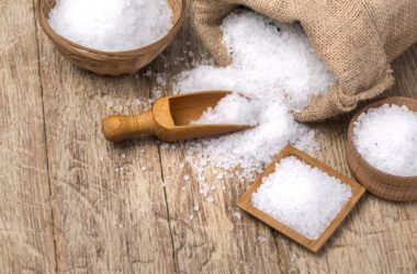 does salt really kill bed bugs?