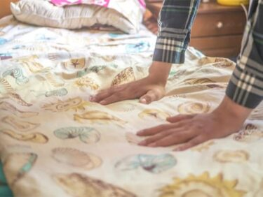 heat treatment for bed bugs effectiveness