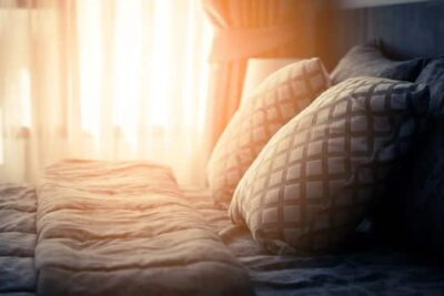 using sunlight to kill bed bugs
