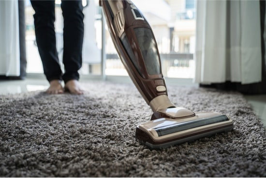 Can Bed Bugs Live in a Vacuum Cleaner?