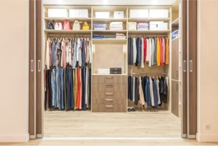 can bed bugs live in your closet?