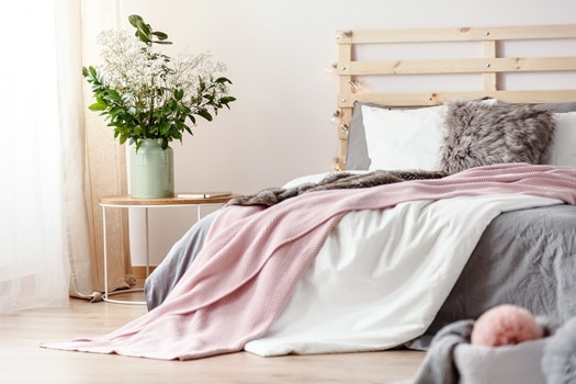 can bed bugs transfer from blankets?