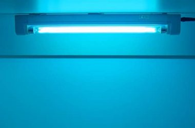 How to Use UV Light to Detect Bed Bugs